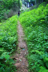 Path to Shoals Falls